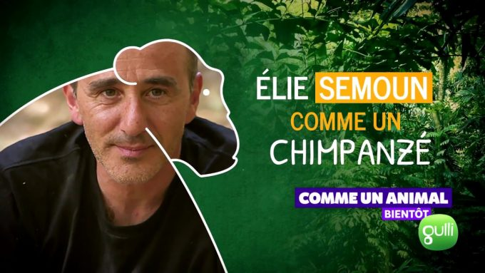 elie_semoun